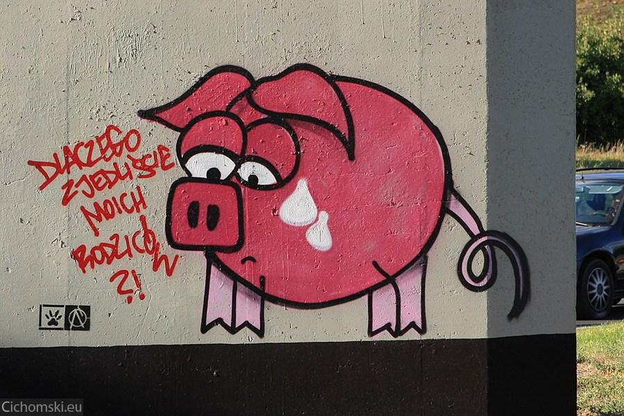 Graffiti Trasa Zamkowa